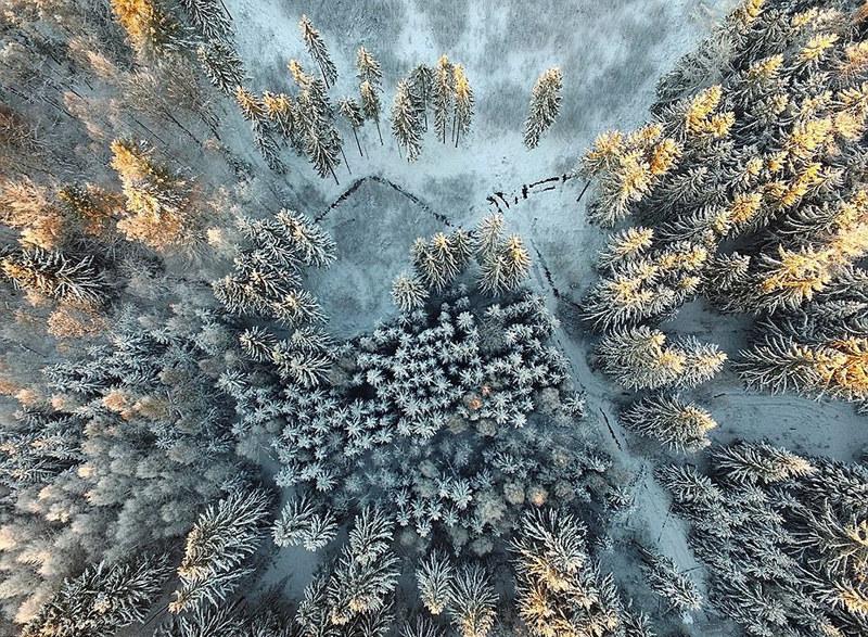 2017年锡耶纳国际摄影奖优秀作品