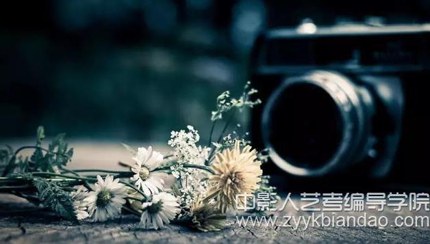十条摄影基础知识
